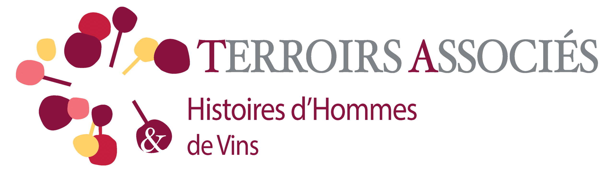 TERROIRS ASSOCIES
